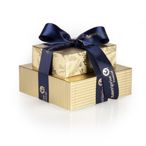 Ameriprise Gold Personal Bundle